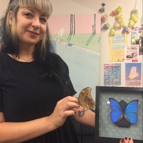 person holding a mounted, framed butterfly