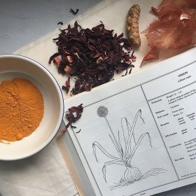 herbs, onion skin, spices next to dyeing recipe book
