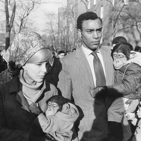 Garry Winogrand, Central Park Zoo, New York City
