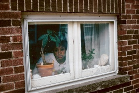 Image of a woman in a white top peering through a small window from behind a potted plant