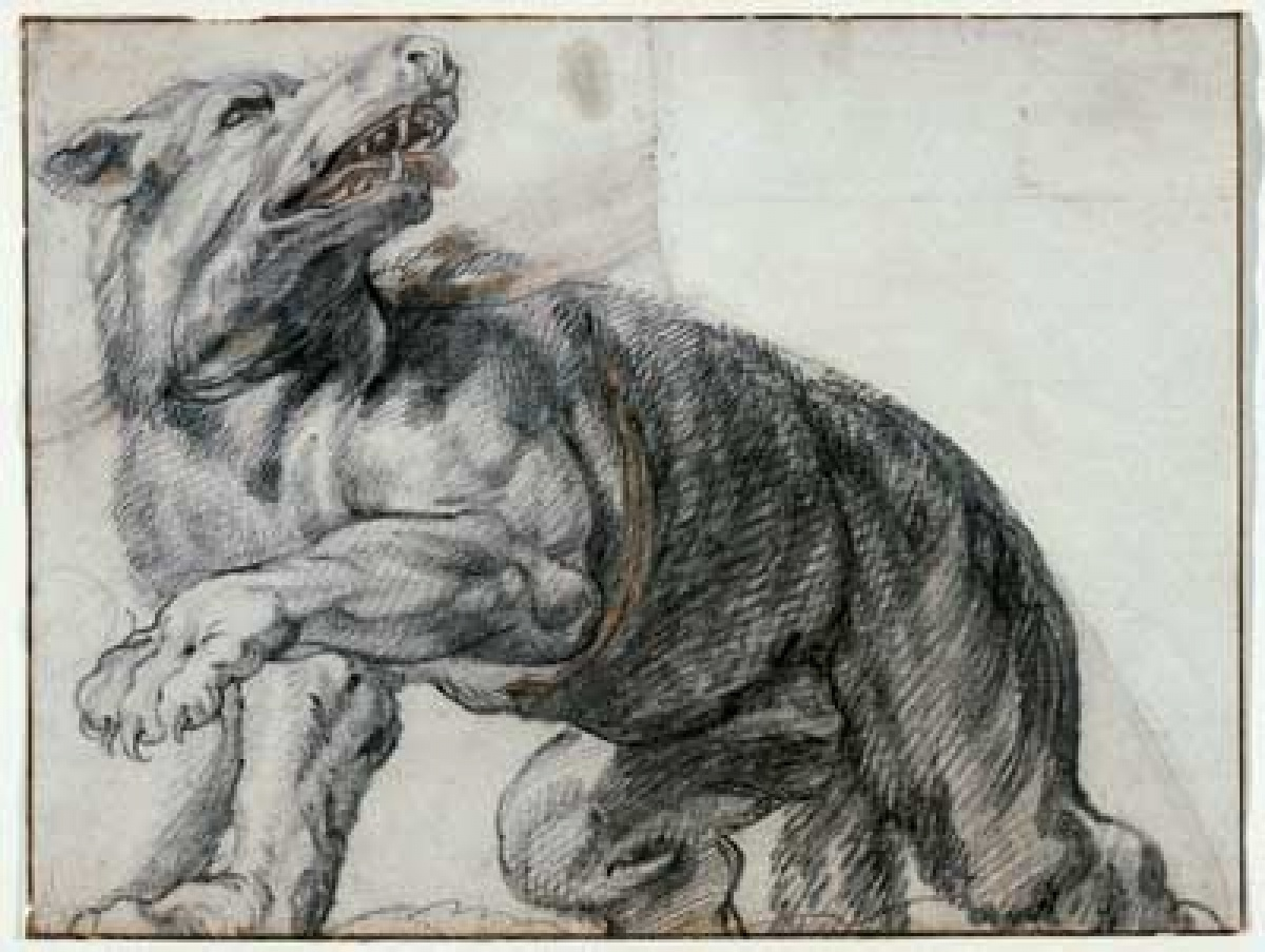 "Frans Snyders (Flemish, 1579-1657) (attributed to)  ""The Wolf"""