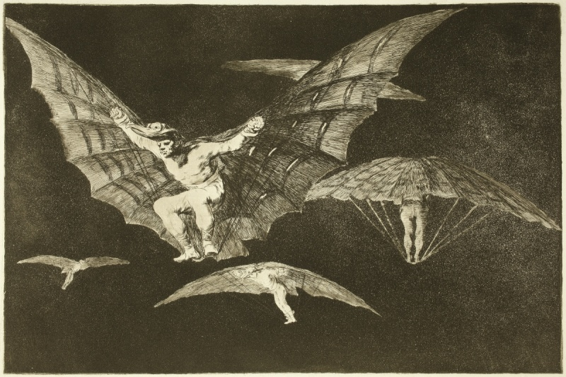 Goya, a way of flying