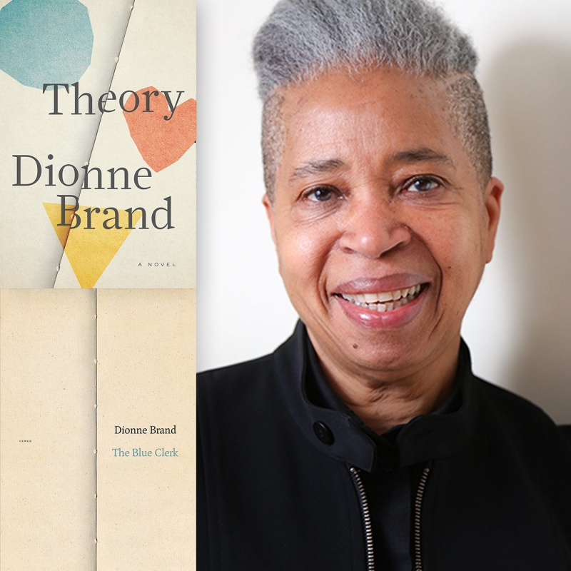 author dionne brand and book covers